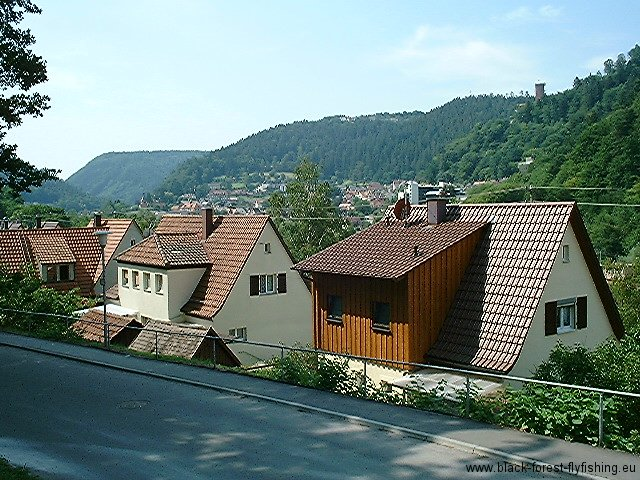 bad-liebenzell-25-7-04-1